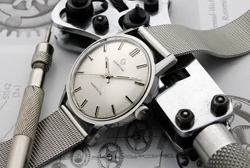 Waterking &#169 Axel66/Watchtime Forum